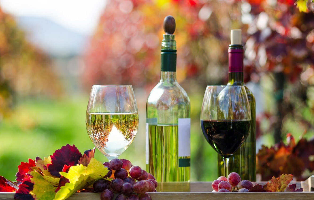 WIne in the fall: so many options. (Photo credit to Amentia)