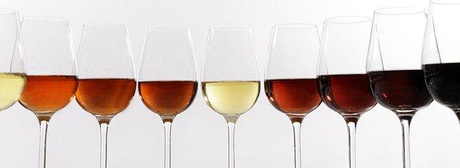 Wines of Jerez.jpg