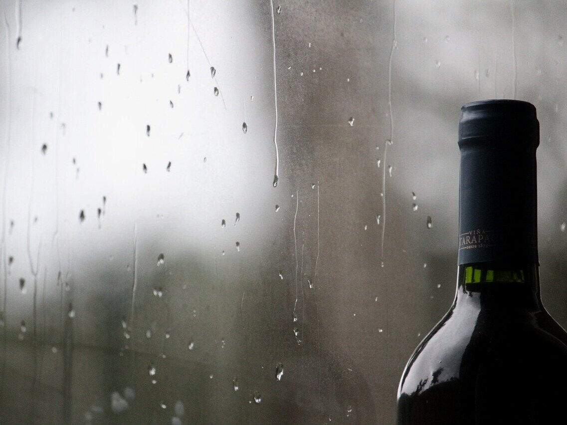 Wines you might enjoy for the winter (whites too!)