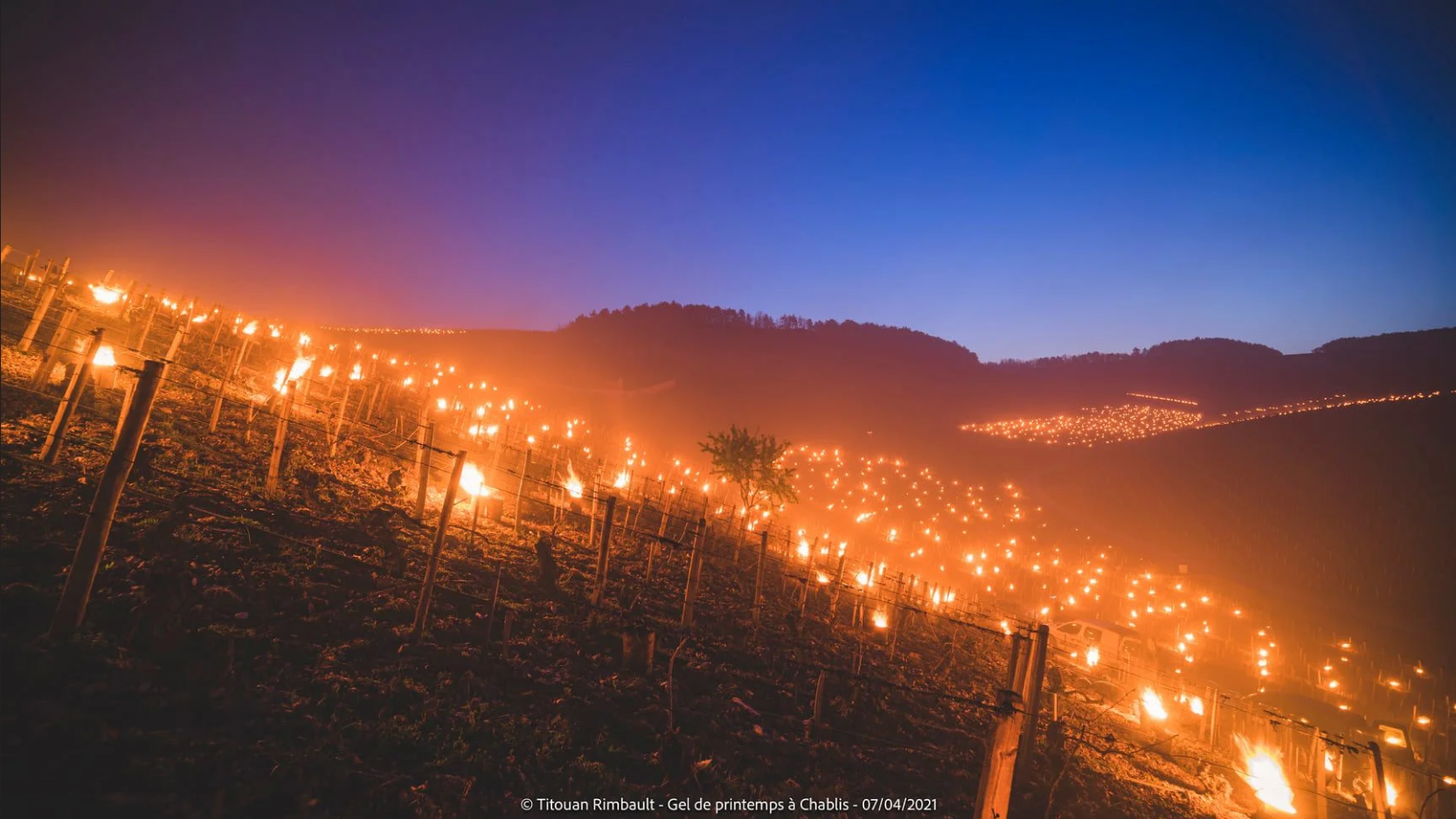 Battling frosts with fire in Auxerre, Chablis (Burgundy) - photo by Titouan Rimbault