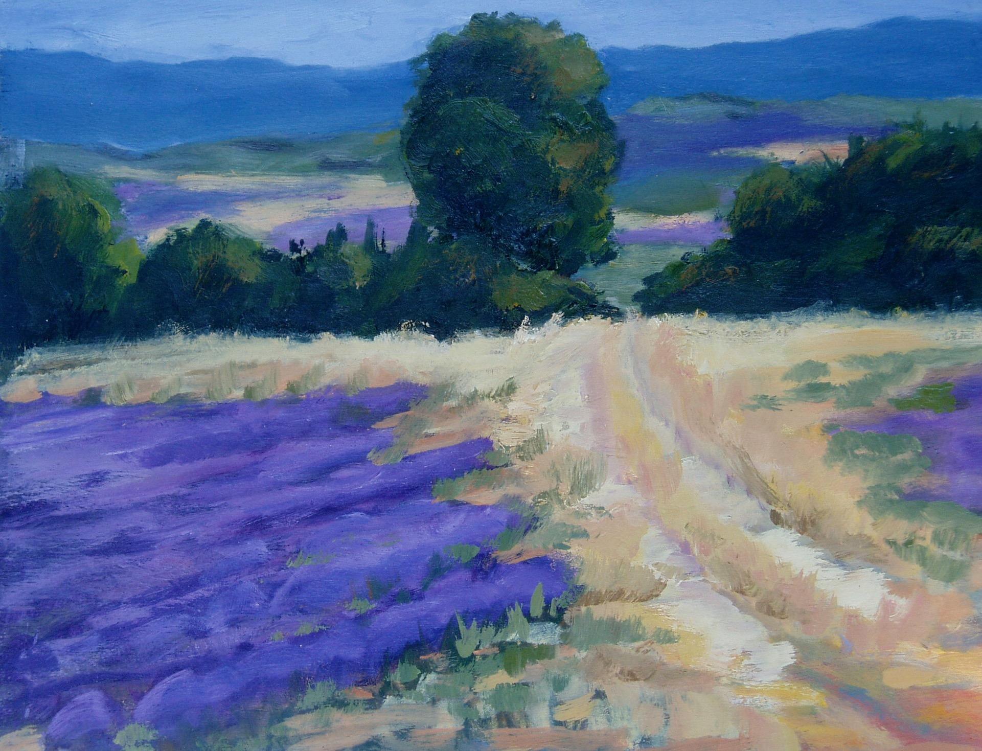 Route Through Lavender