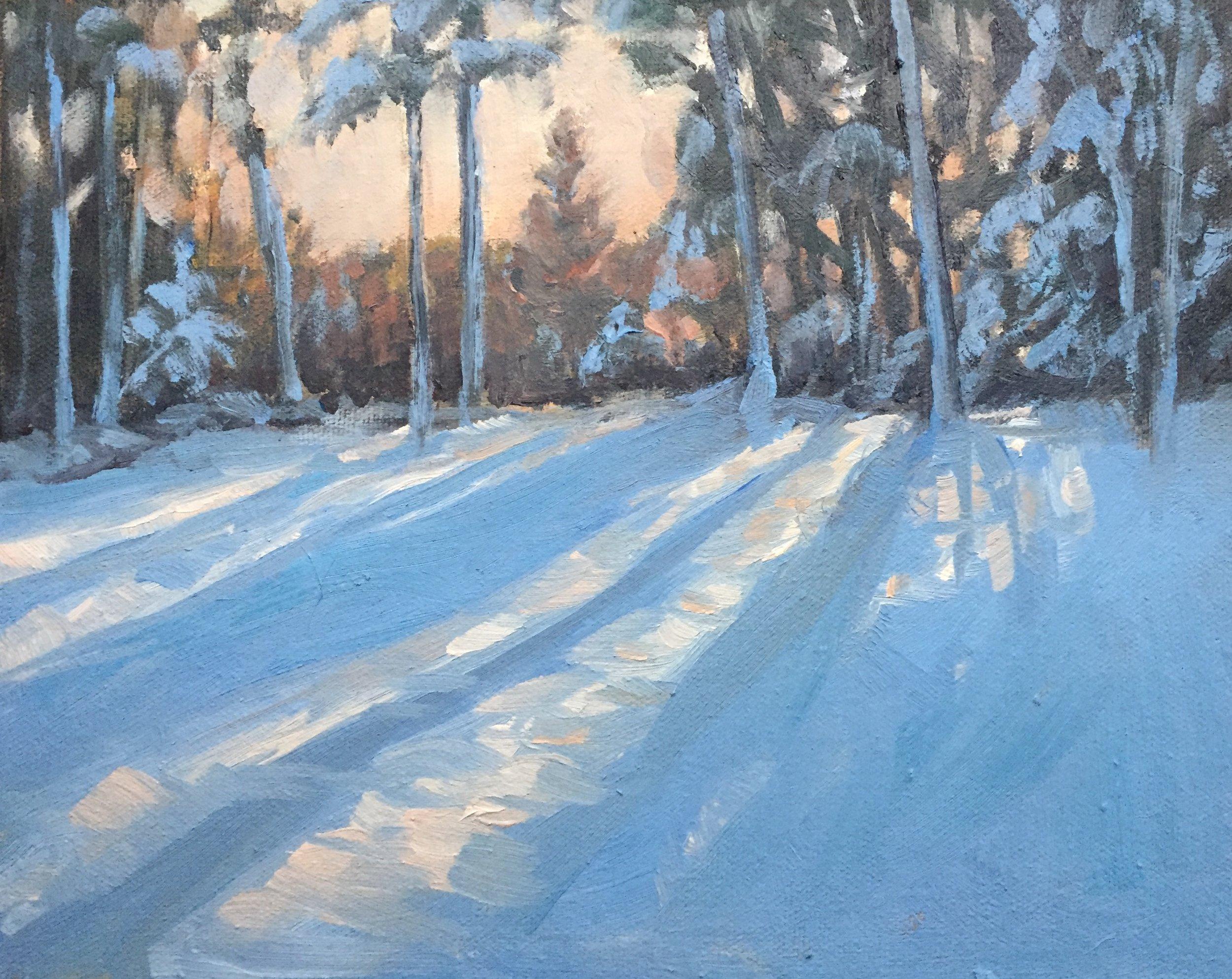 Sun Setting on Fresh Snow