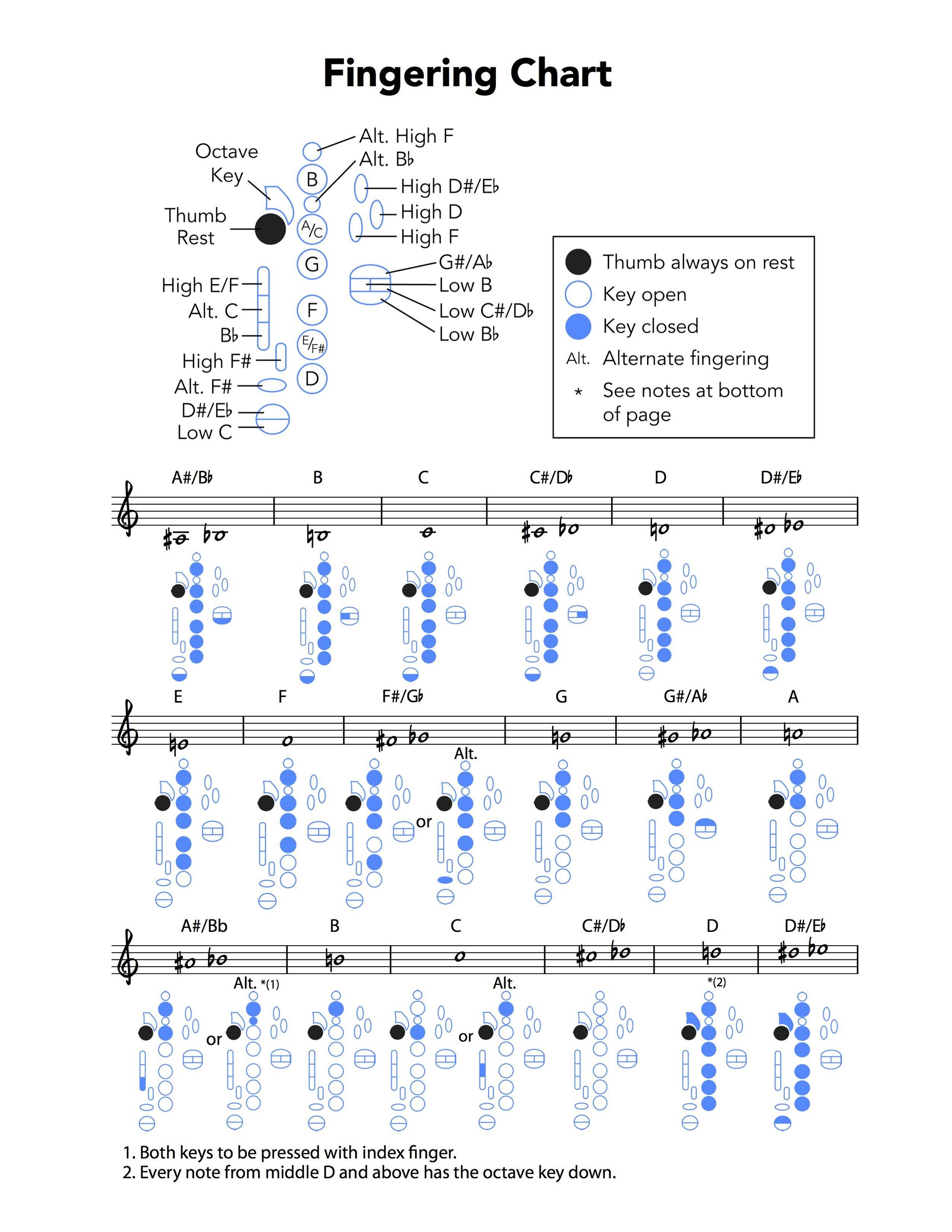 Fingering Chart PG 3 WEB.jpg