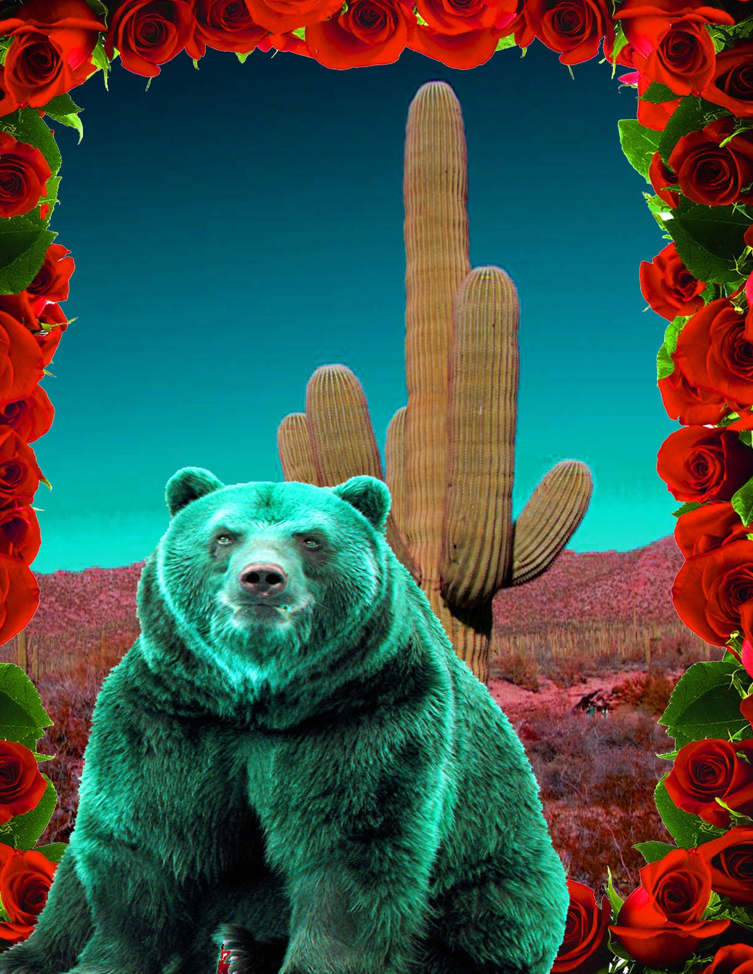 bearportal.jpg