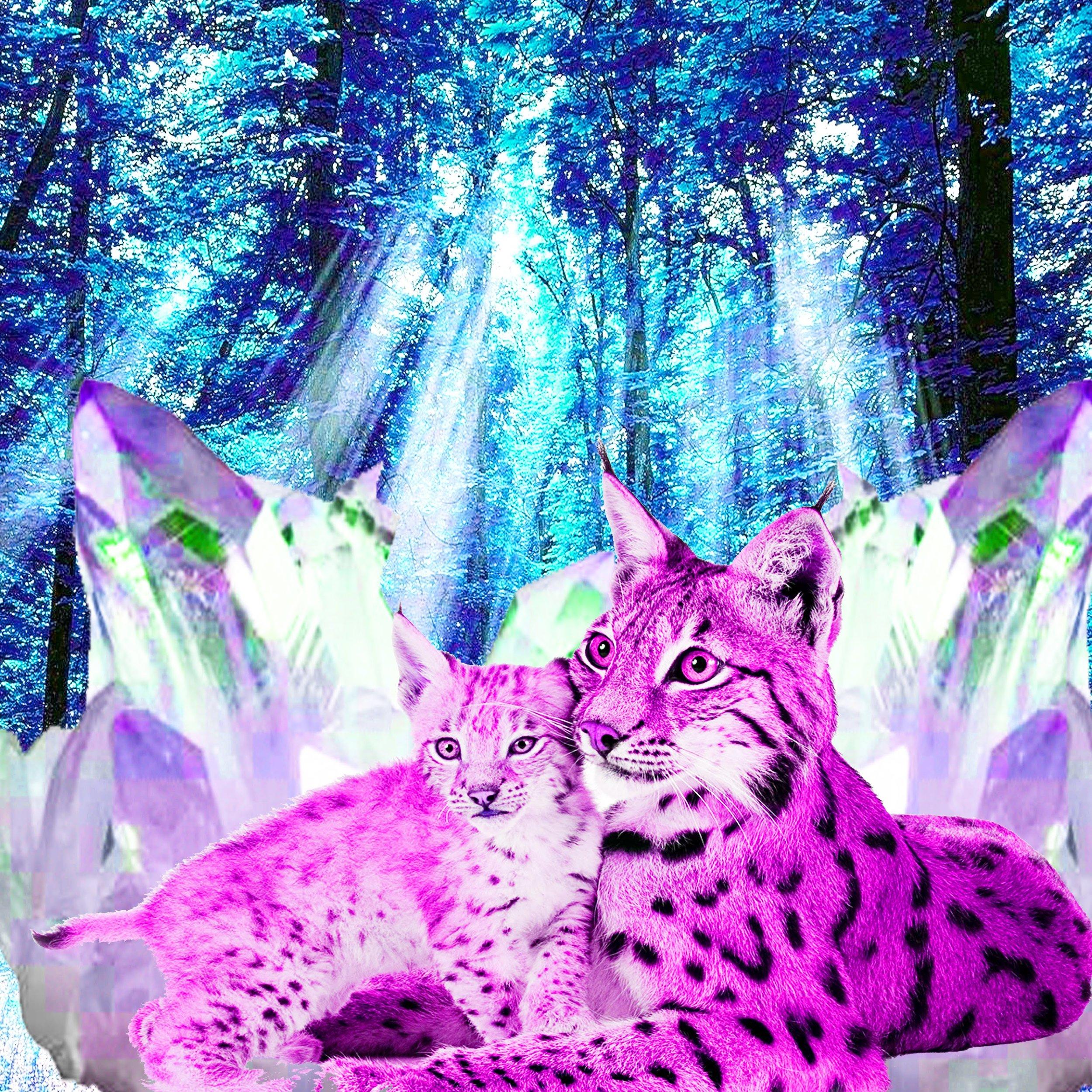 crystal lions.jpg