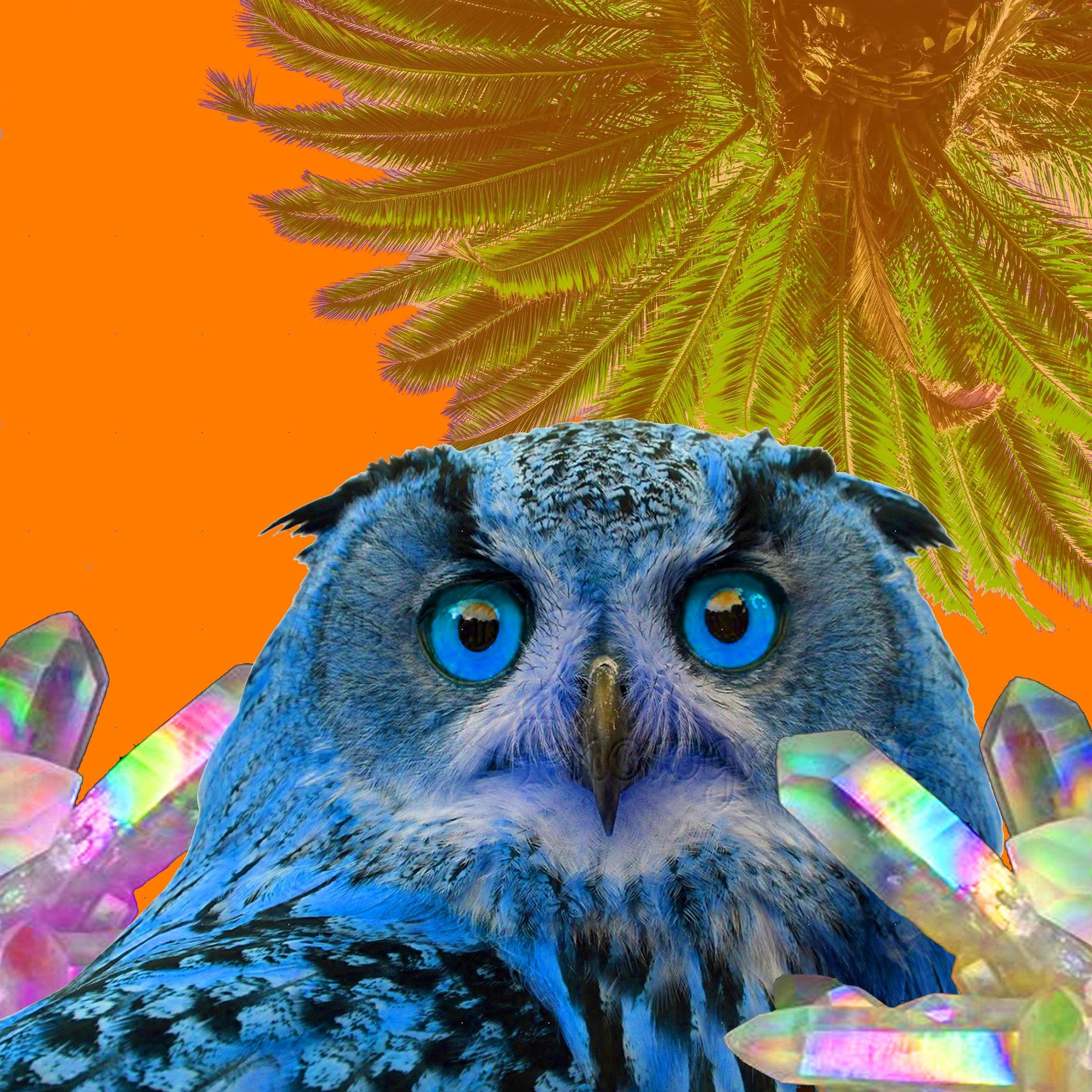 owlmagic.jpg
