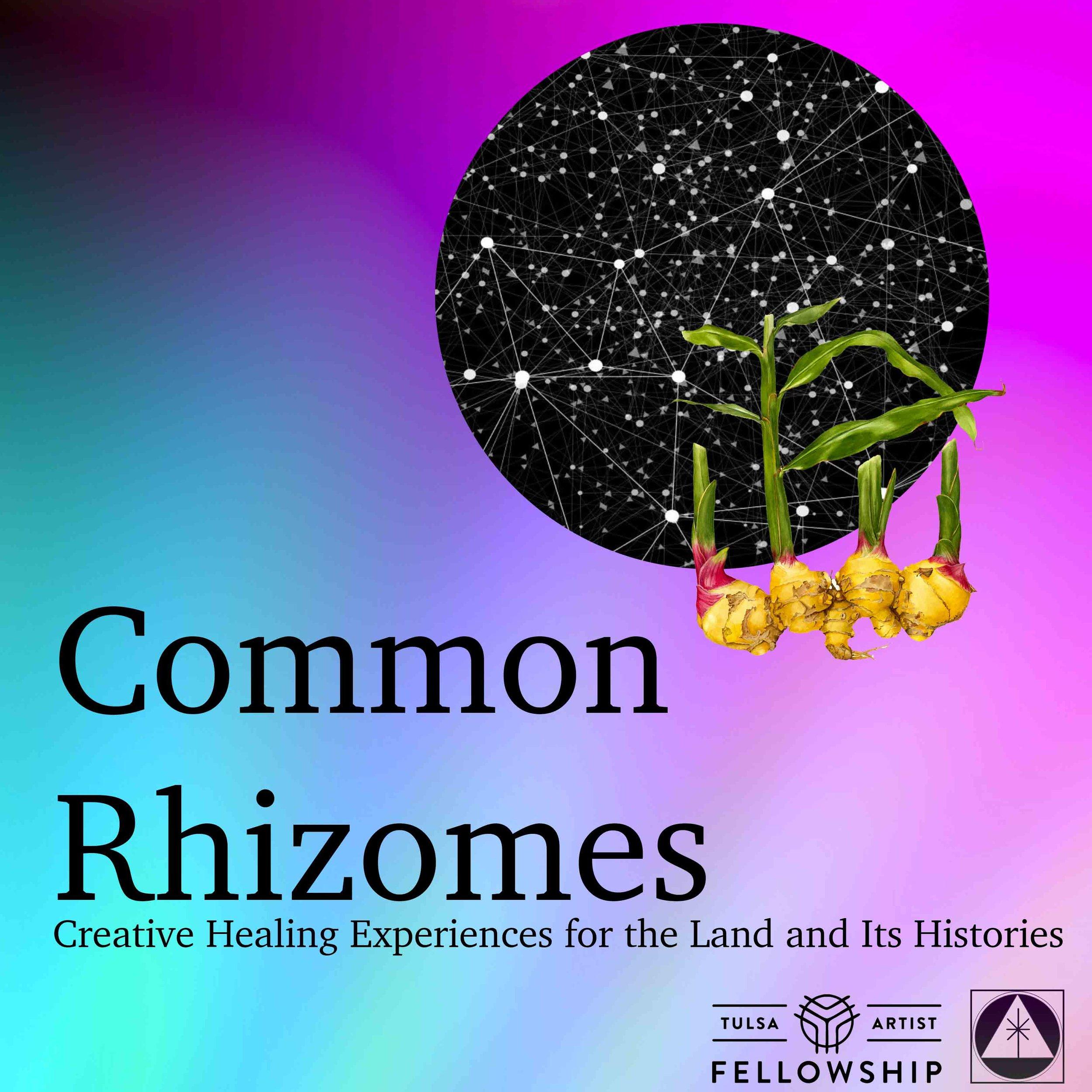 CommonRhizomes1.jpg