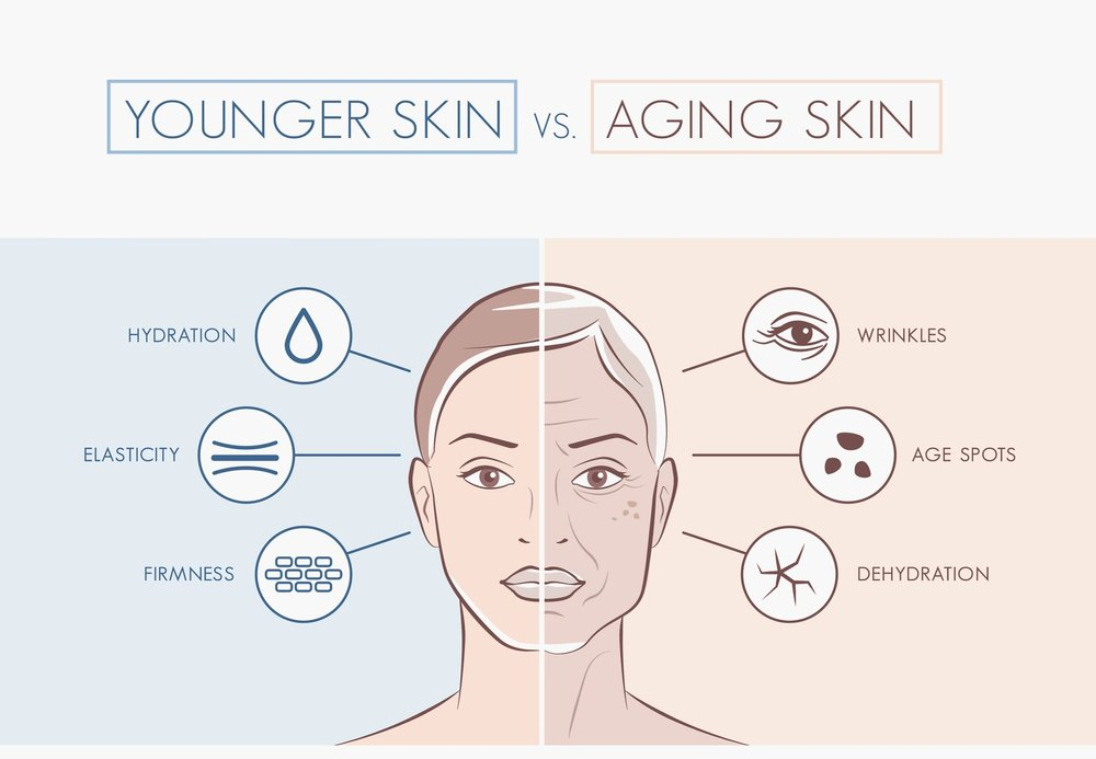 collagen is an essential protein that provides elasticity to the skin, helping it to appear more youthful and healthy.