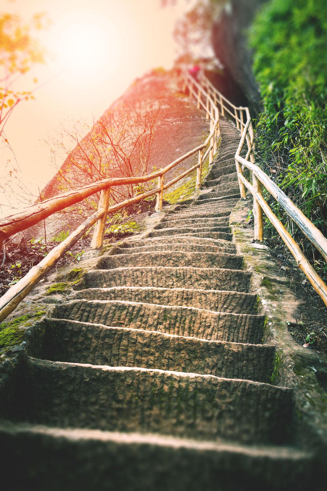 The Path Towards Discipline.jpg