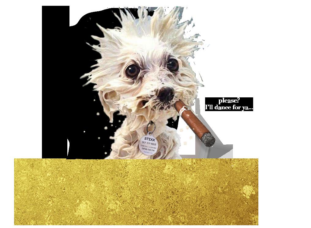 JCMB stixx begging cigar2.png