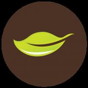 leaf-180x180.png