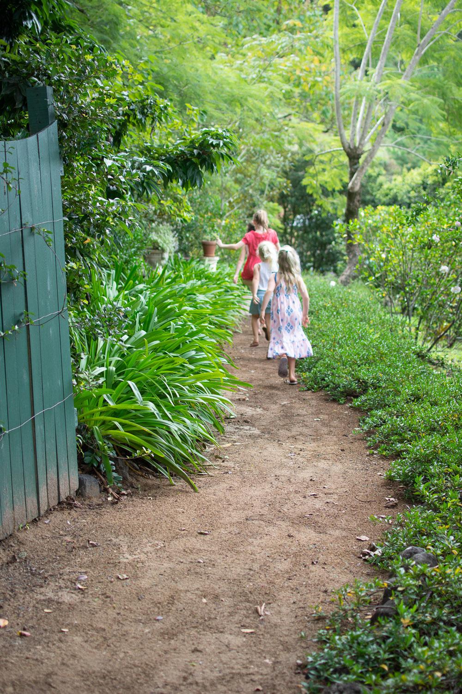 Garden of Light Tour, Tyalgum, Walking Path