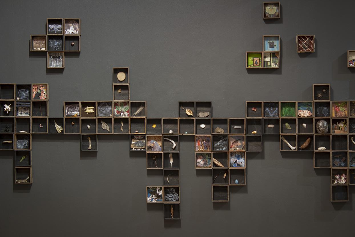 Sophy Tuttle,  Artist, Solastalgia Installation