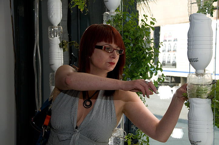 Amanda McDonald Crowley,  Cultural Worker and Curator