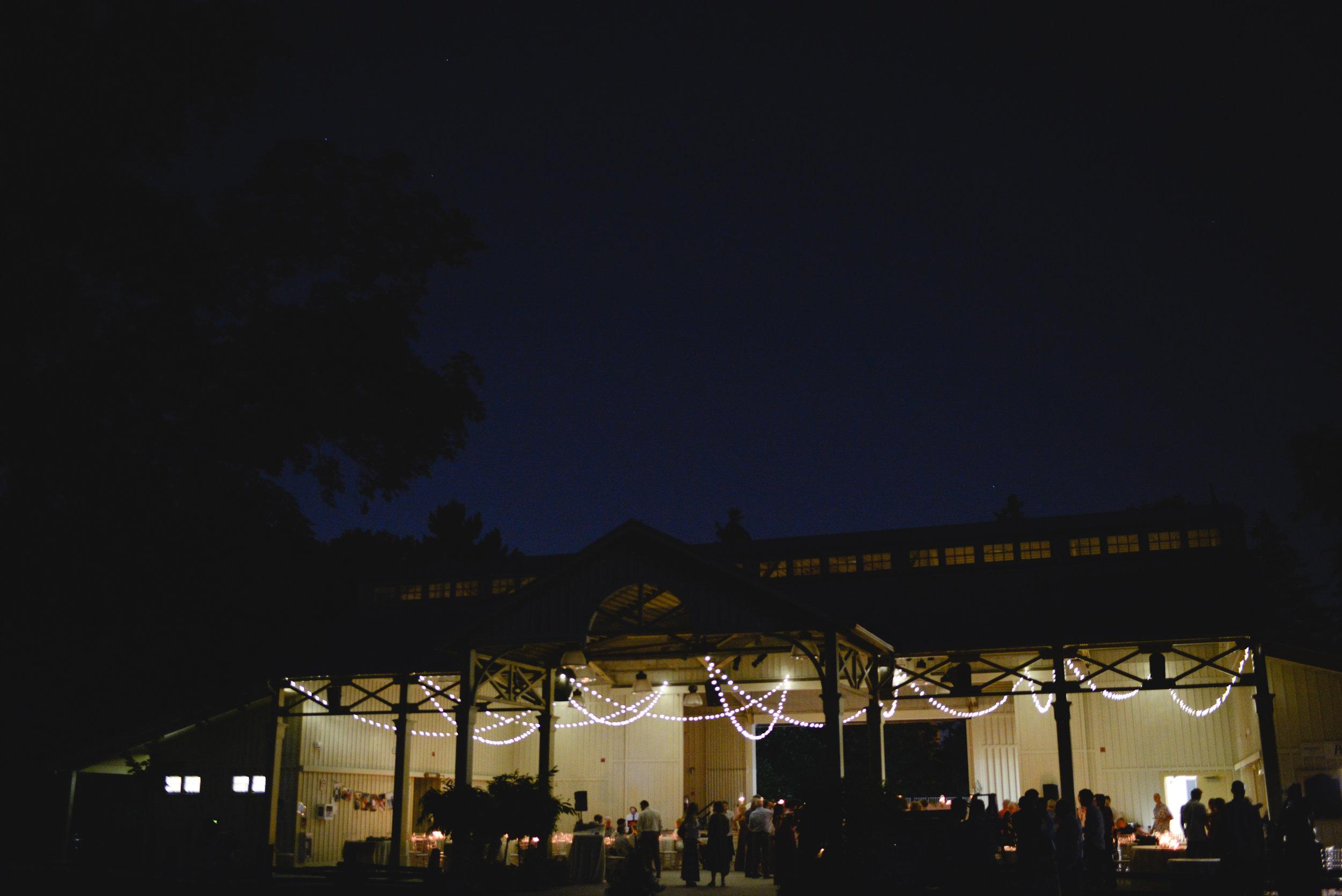 Black creek pioneer village  wedding reception (22).jpg