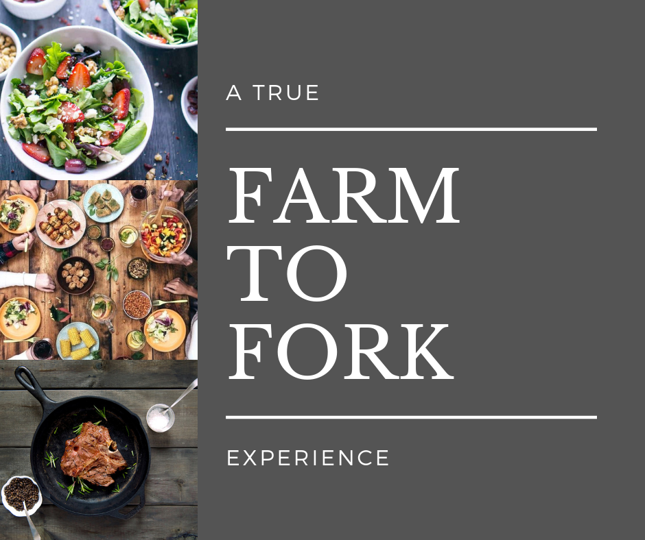 A FARM TO FORK EXPERIENCE.png
