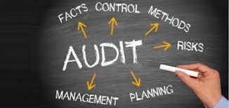 business audit.jpg