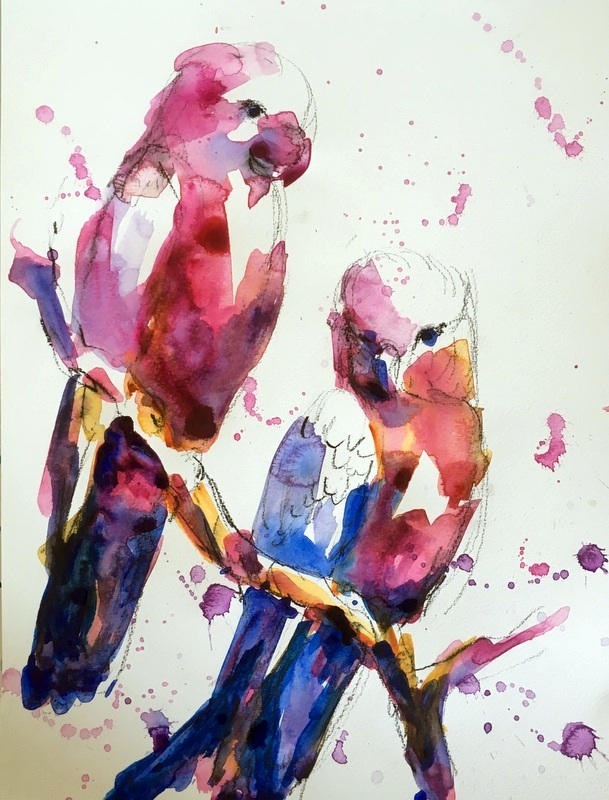 Gorgeous Galahs-acrylic by Karen Walsh.JPG