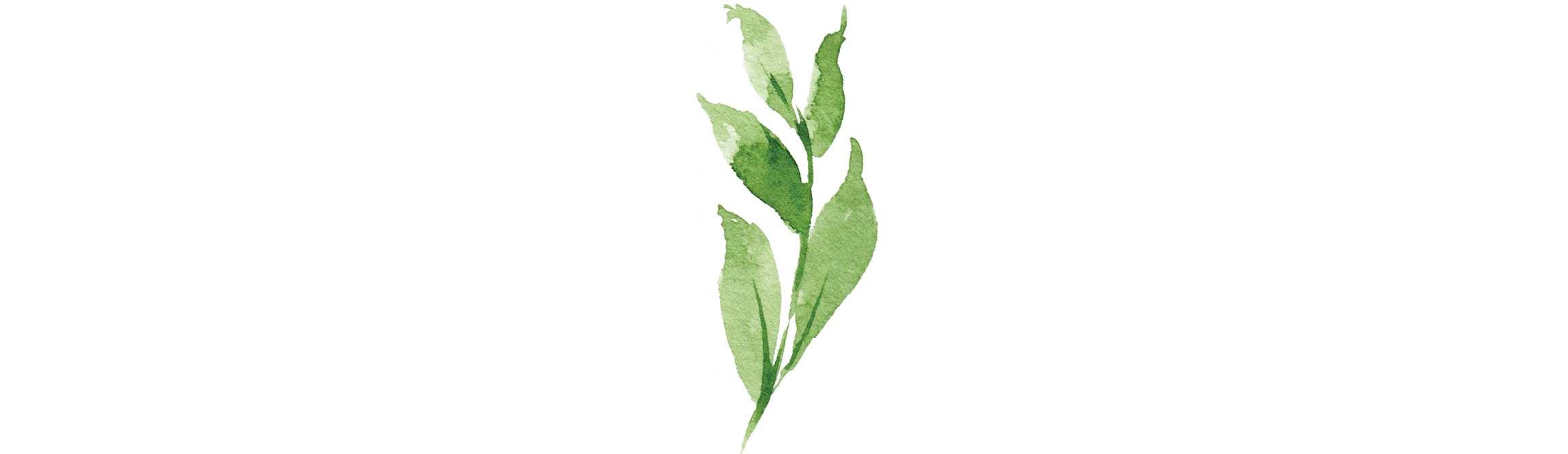 Lighthouse Expressive Therapy Leaf 1.png