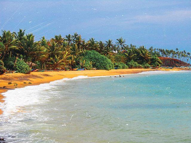 Paradise is a state of mind ✨#srilanka #mirissa #gltlove
