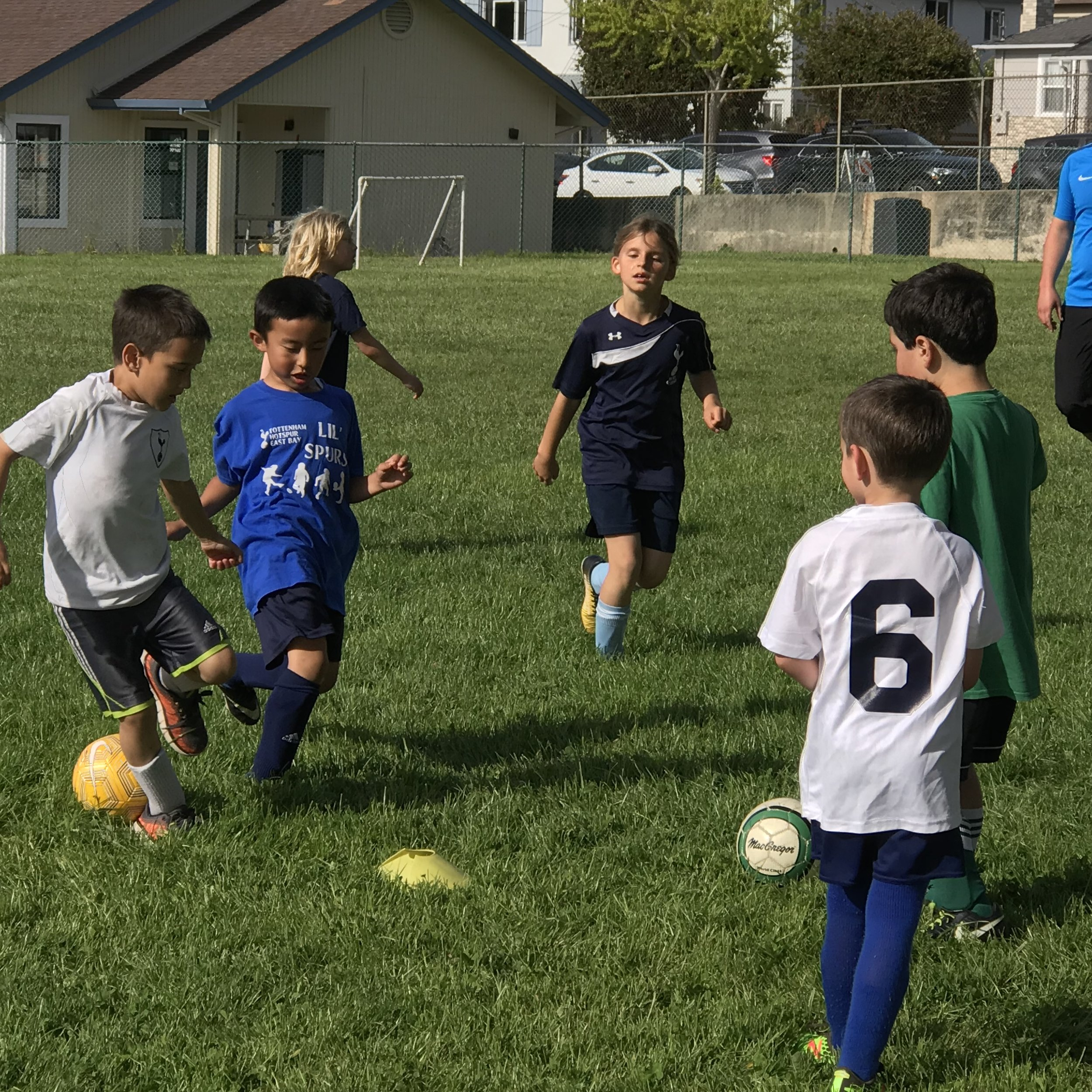 Spurs Rec Soccer - Our recreational youth soccer program provides a relaxed introduction to the sport, but with a more carefully vetted and prepared team of coaches than is customary in recreational soccer.