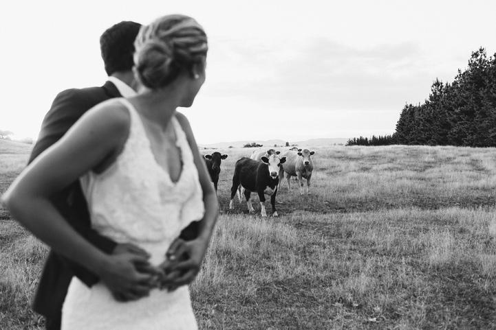 076-melissa_mills_photography_farm_wedding_new_zealand.jpg
