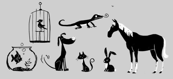 Huisdierenschets.jpg