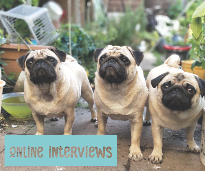 Online-interviews-pic.jpg