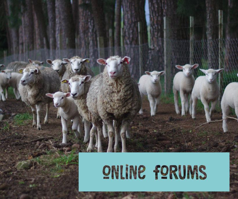 Online-forums-pic.jpg
