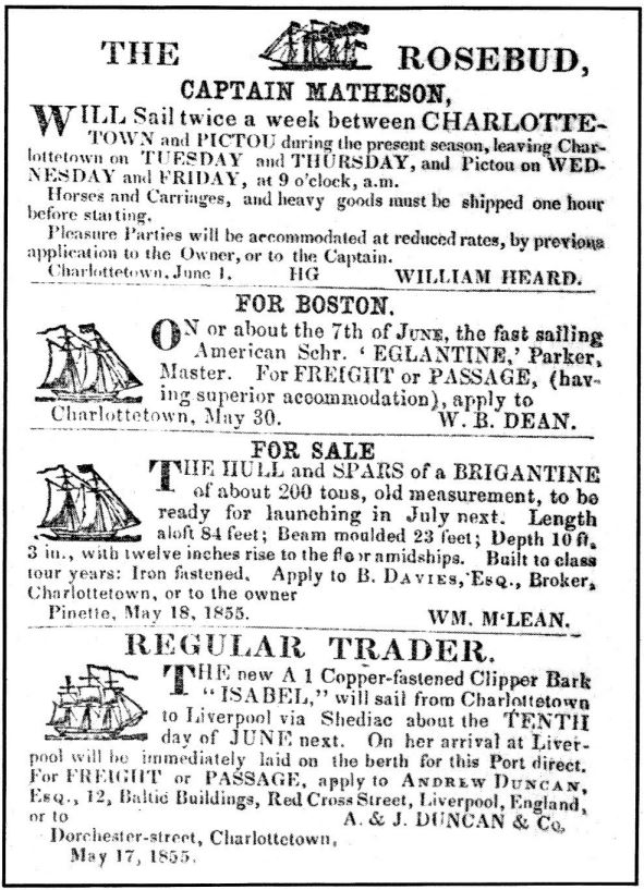 Shipping advertisement, taken from the Islander newspaper, 1855