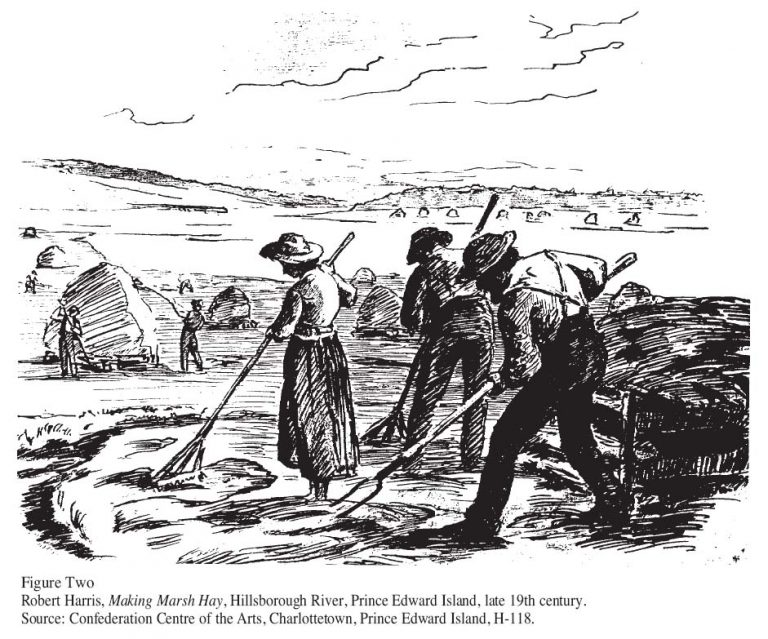 Making-Marsh-Hay-Robert-Harris-768x639.jpg