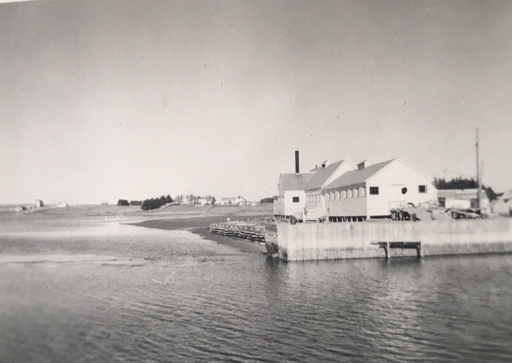 Johnston's lobster cannery, 1948. Photo: Ivan K. Mitchell