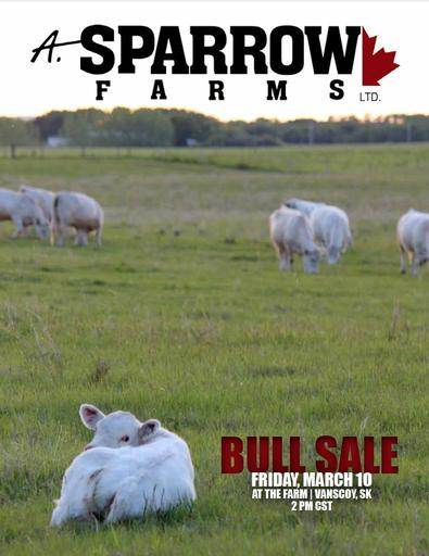 Bull Sale Catalogue 2017