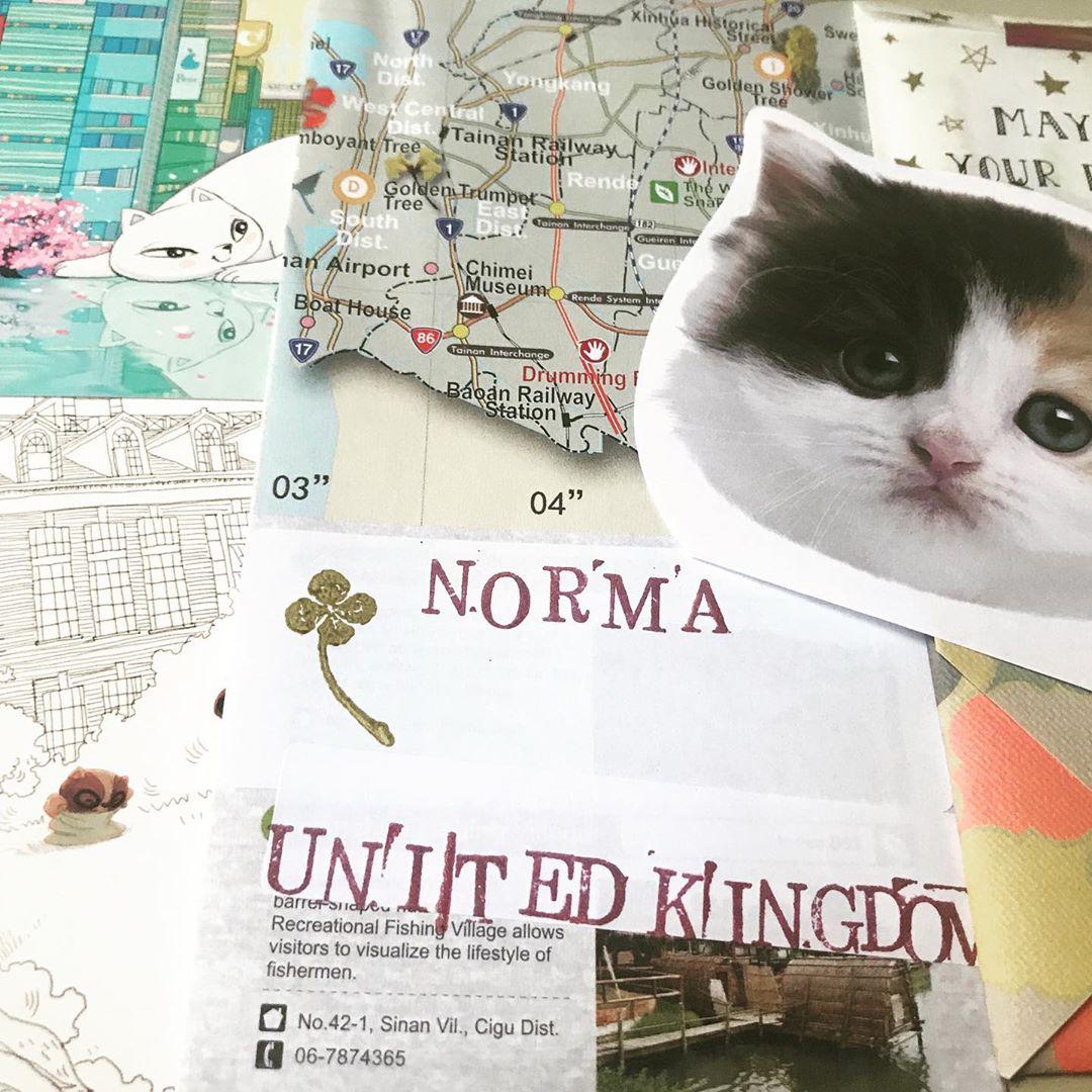 kats.jpg