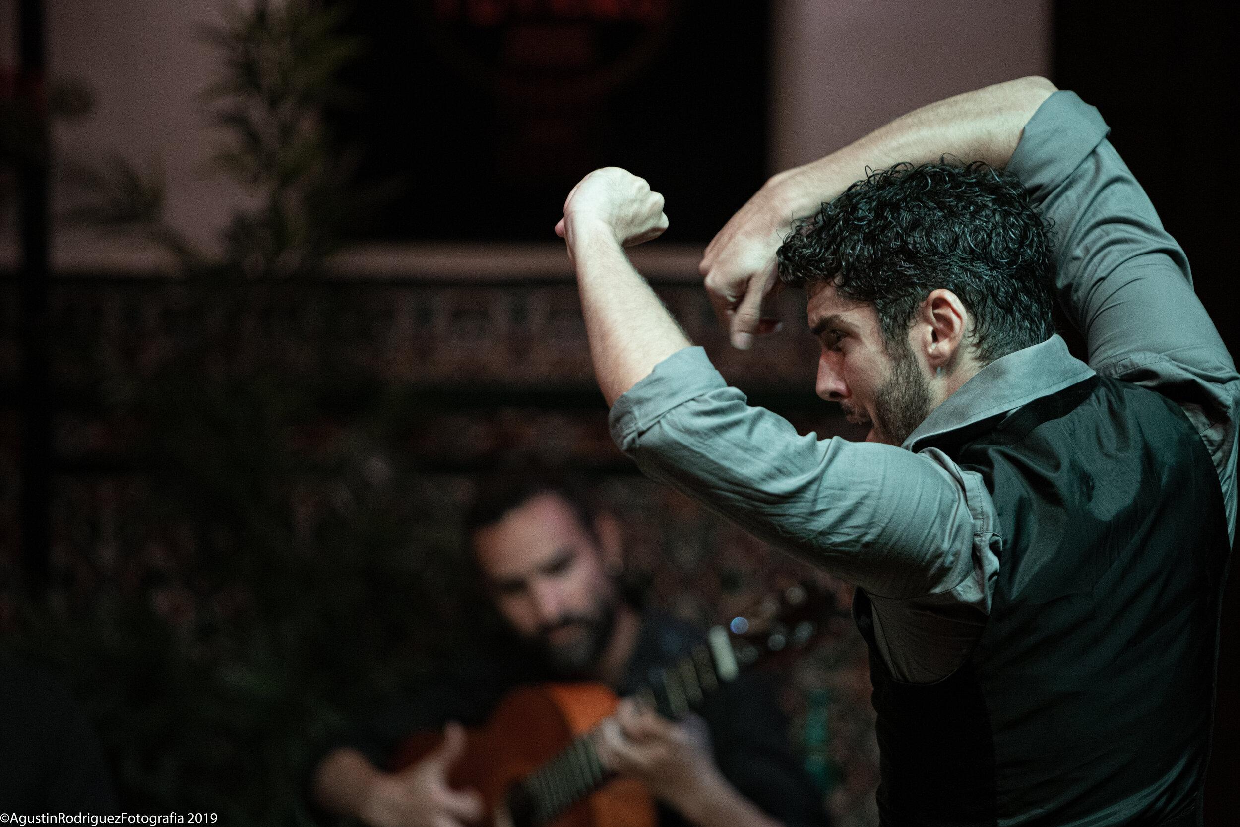 Photo courtesy of La Casa del Flamenco Sevilla
