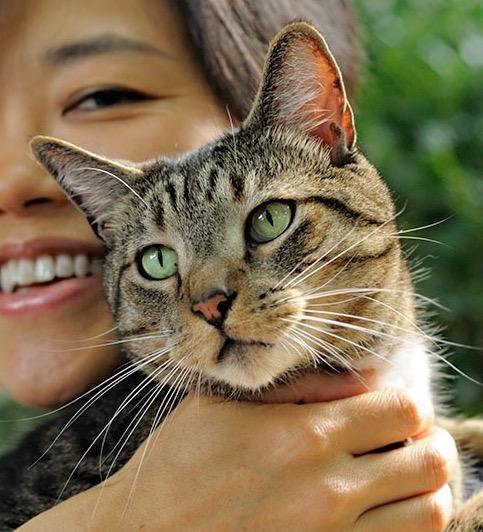 Misa Ono with her cat Tora