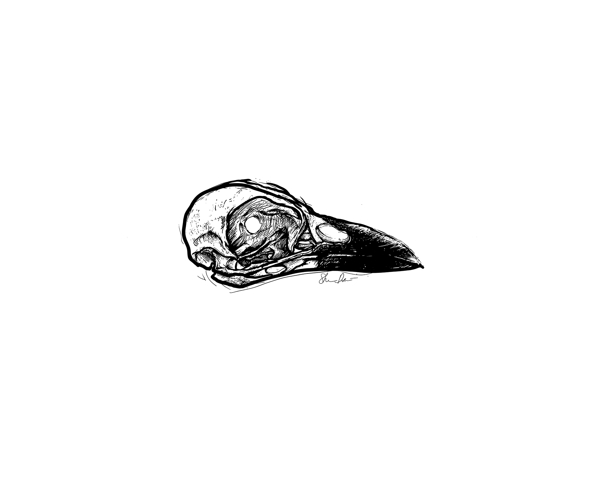 Morn | Crow Skull