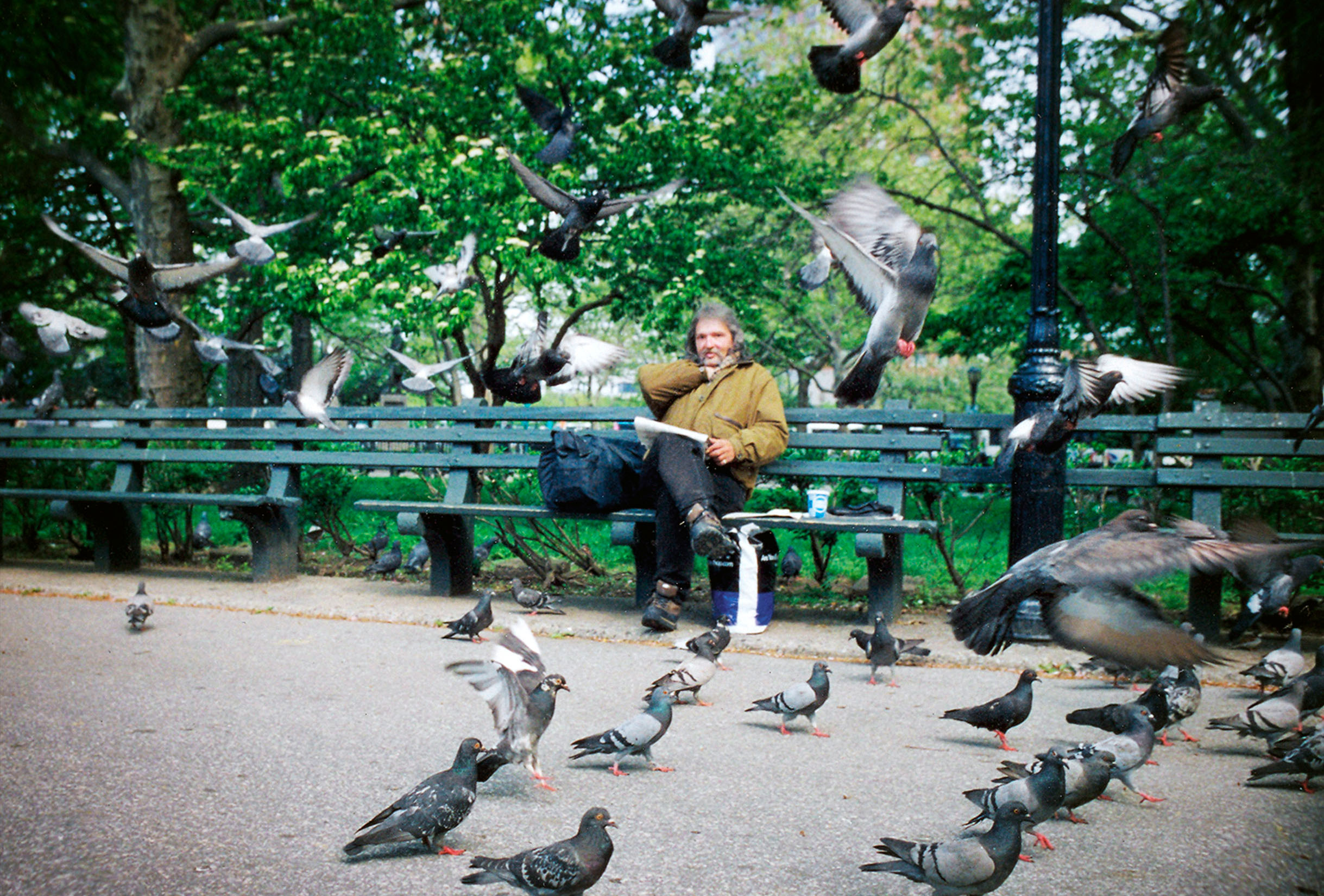 shane_deruise_new_york_birds.jpg