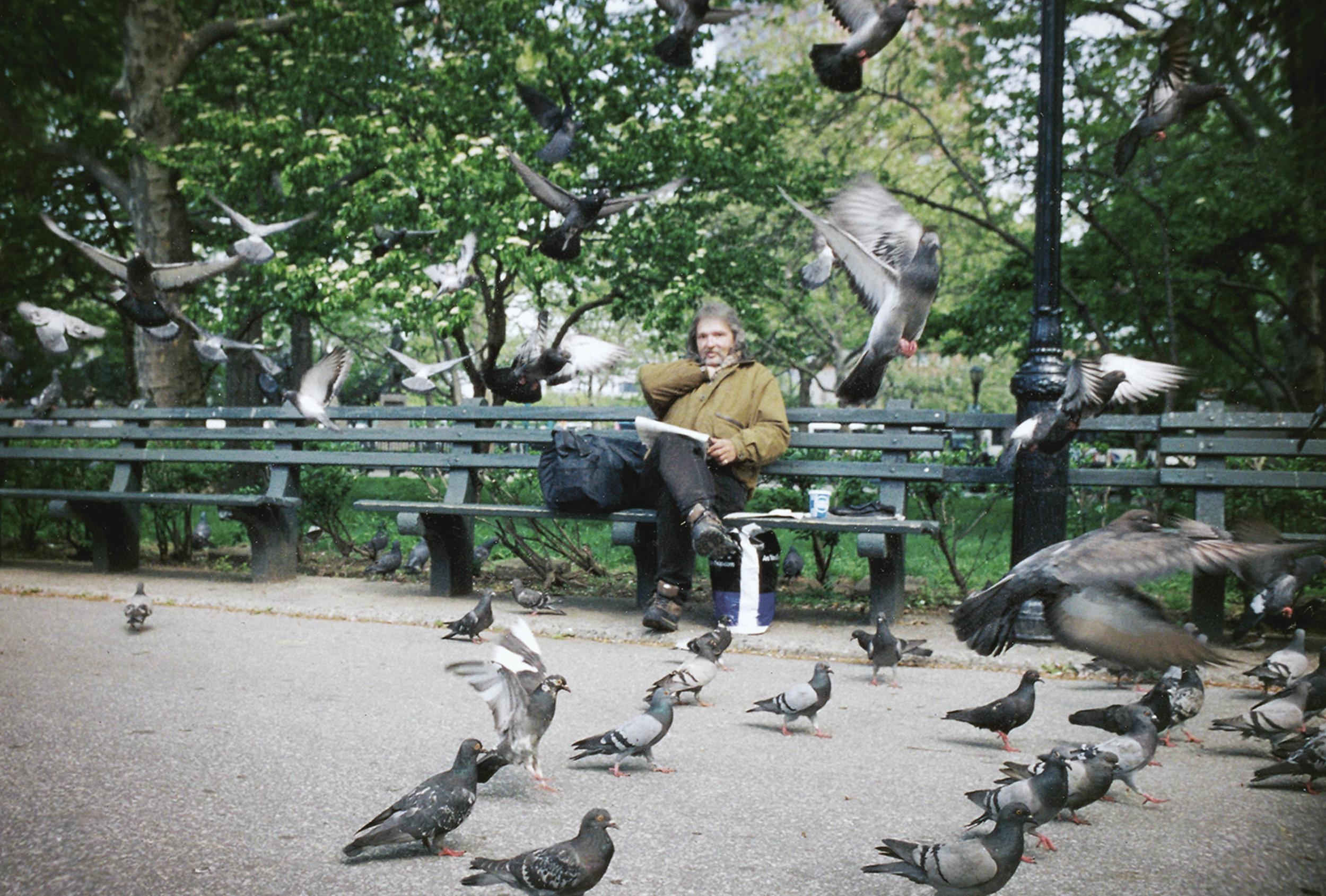 shane_deruise_alleyways_bird_man.jpg
