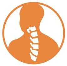 spine-icon.jpg