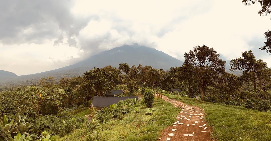 Kibumba Camp Virunga Globe and Tribe
