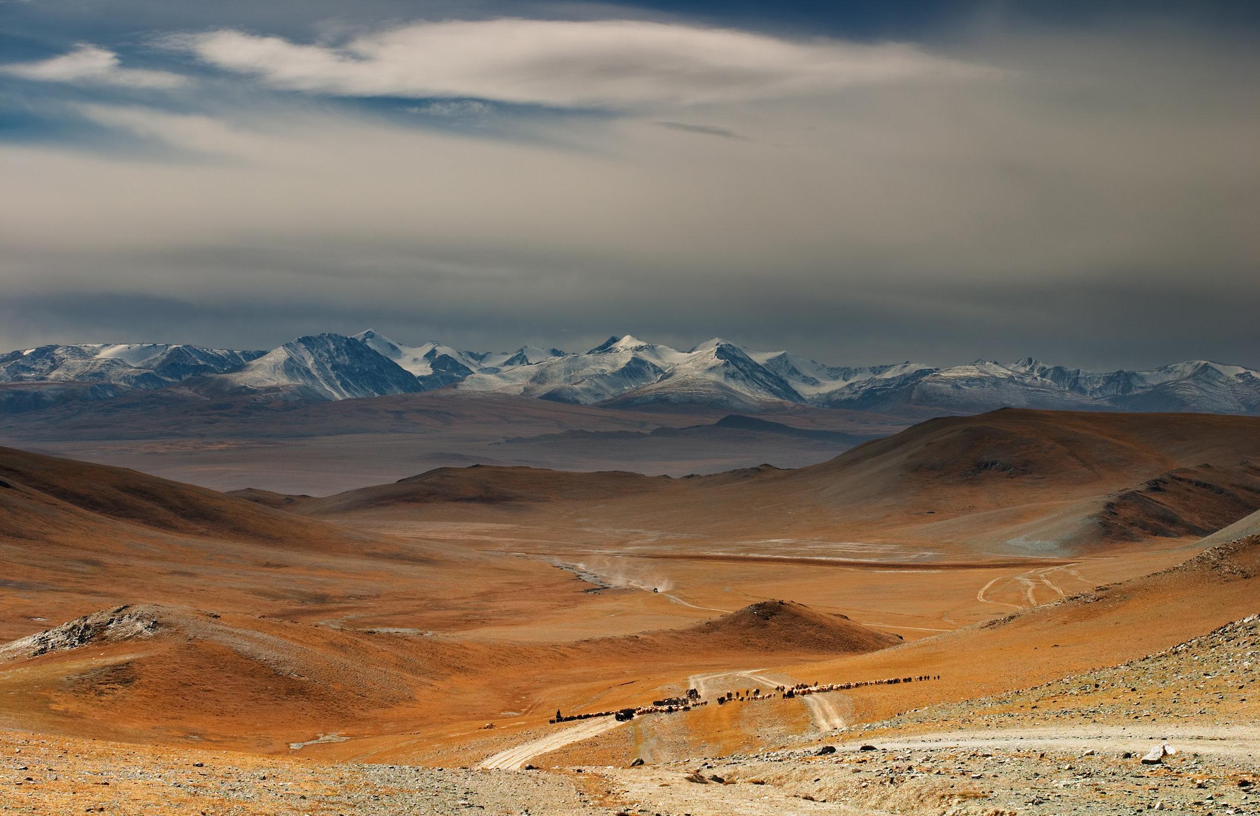 mongolia 3.jpeg