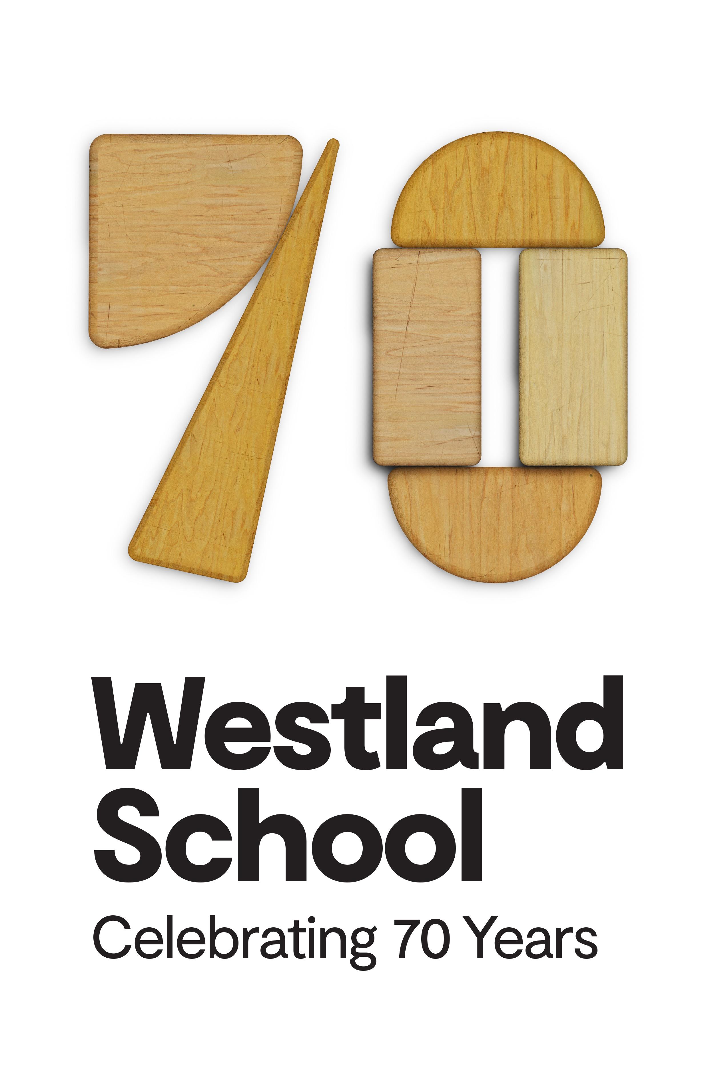 distinc_portfolio_westland_school_02.jpg