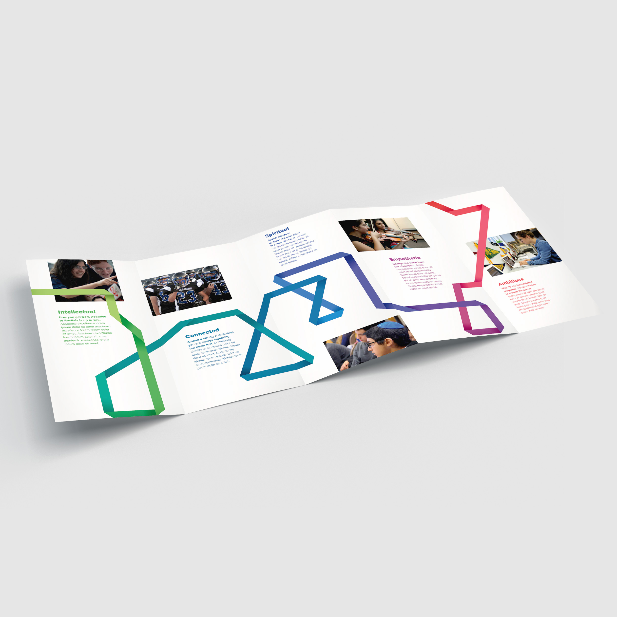 distinc_Milken_brochure_accordion.jpg