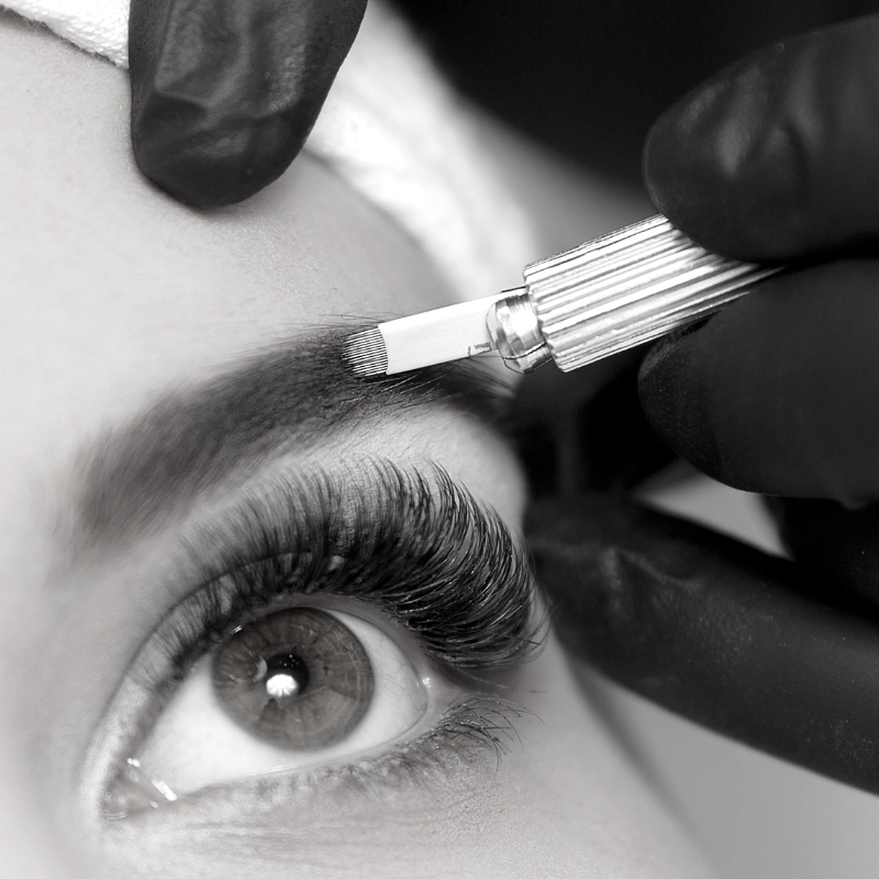 Envy PMU microblading services in Charlotte, NC.