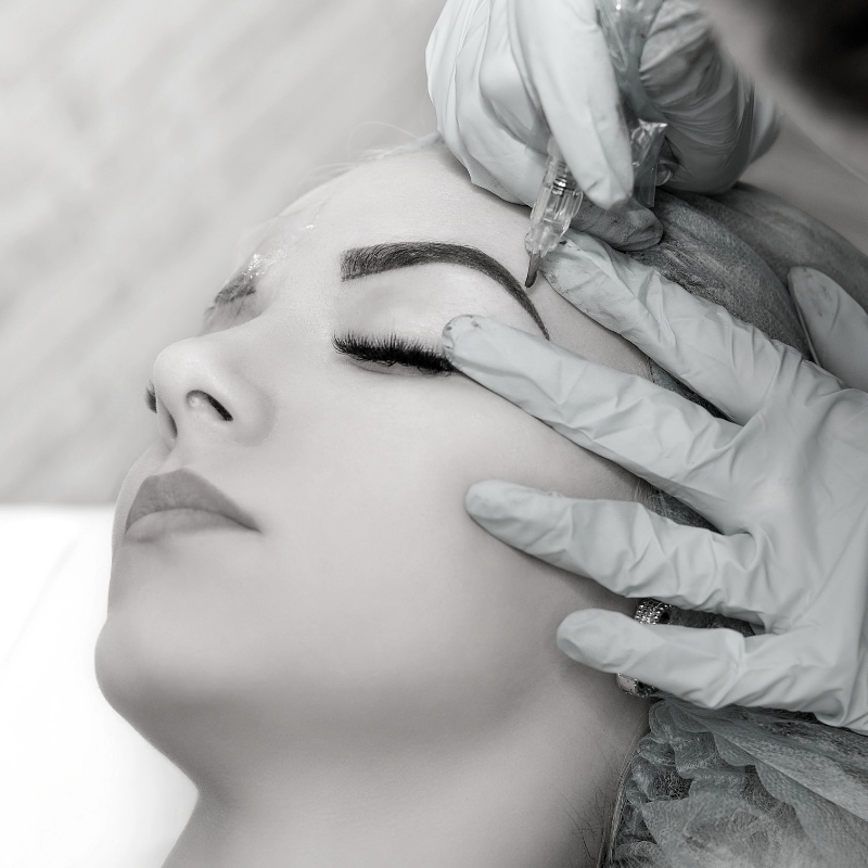 Envy PMU permanent makeup service powdered brow, in Charlotte, NC.