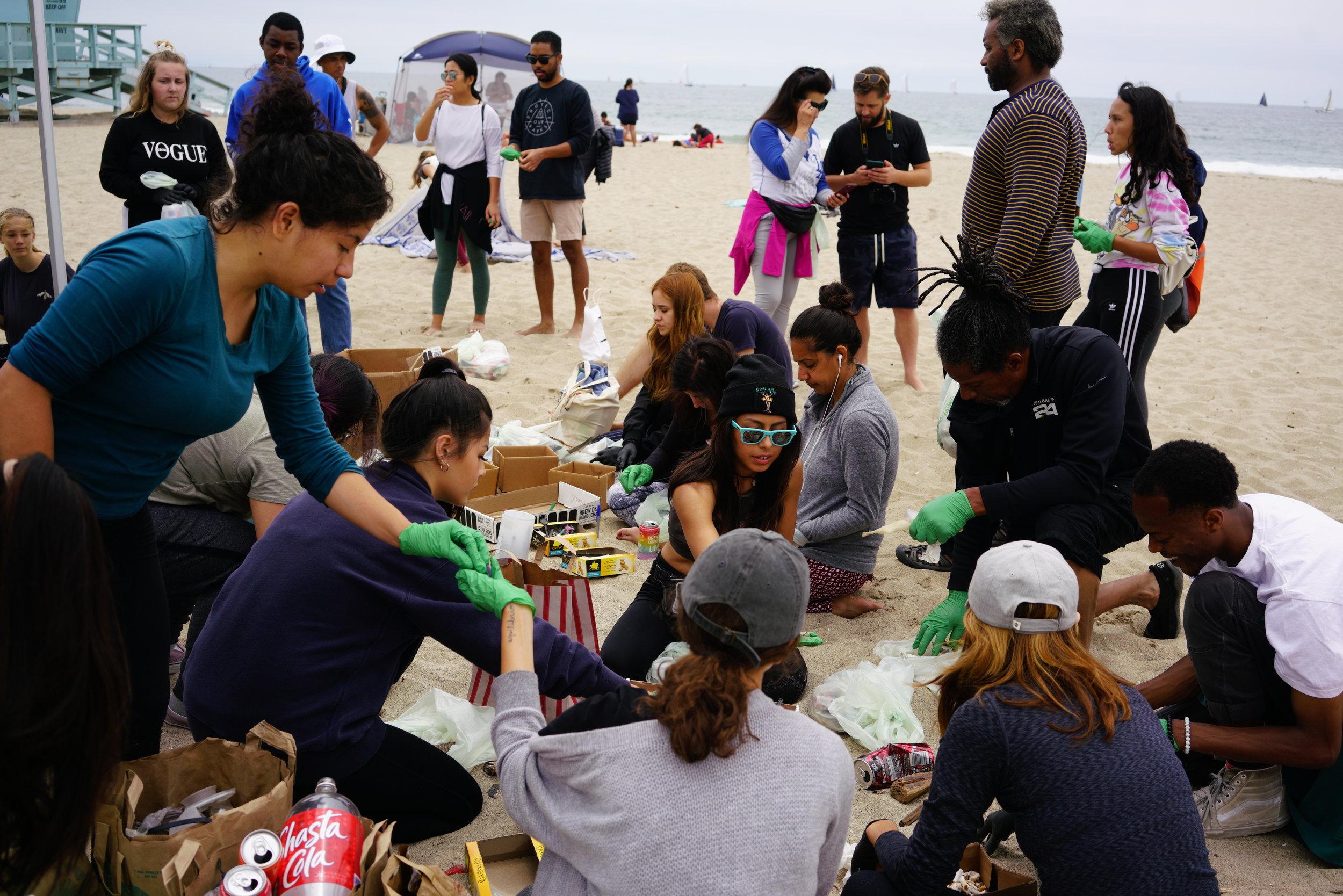 Beach Clean up sorting Daana Blue Venice BeachJPG