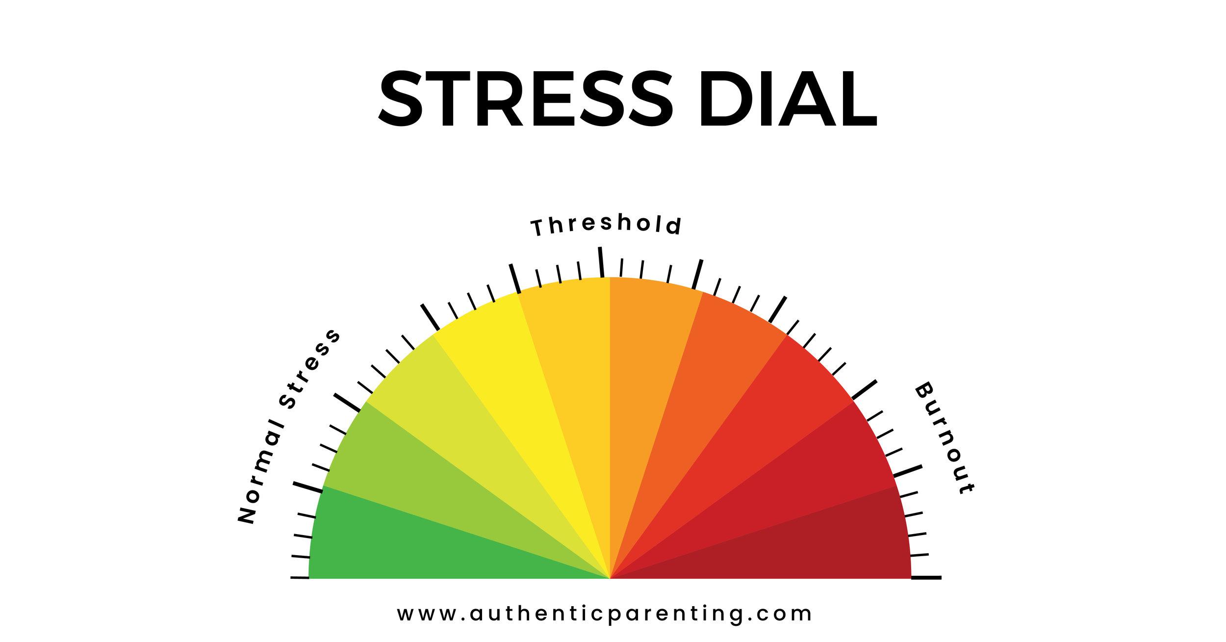 Anna Seewald Stress Dial