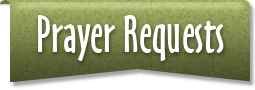 Need Prayer? Send us your prayer requests. We have a team of people wanting to pray for you.