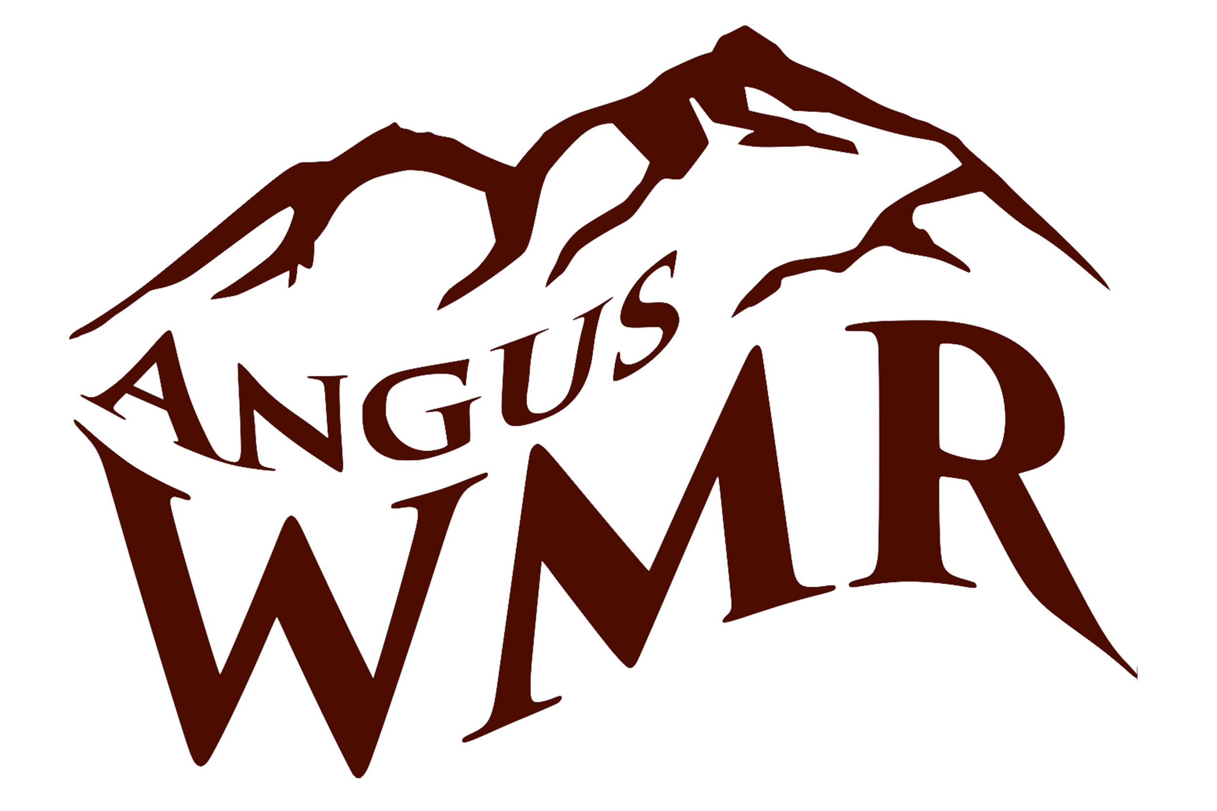 WMR logo with stroke.png